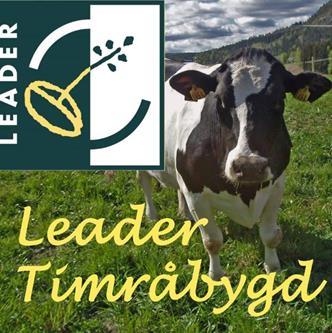 Leader Timrabygd